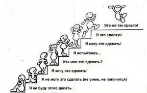 Лестница эволюции Человека