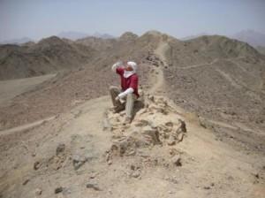 в поселении бедуинов