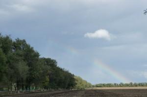 увидеть радугу